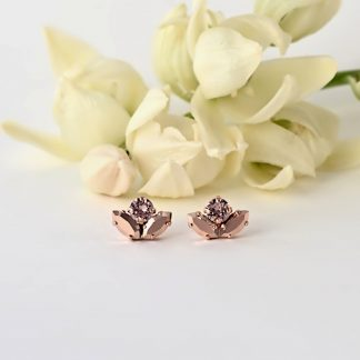 Delicate rose gold earrings1